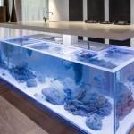 Top with an aquarium built