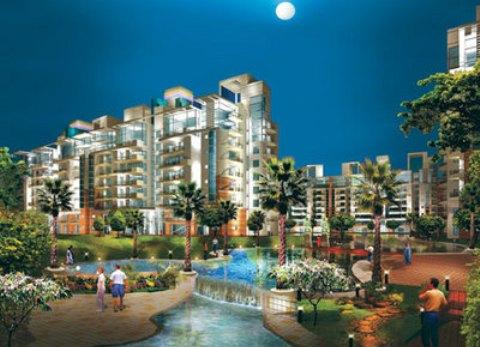 Properties in Delhi Up for Grabs!
