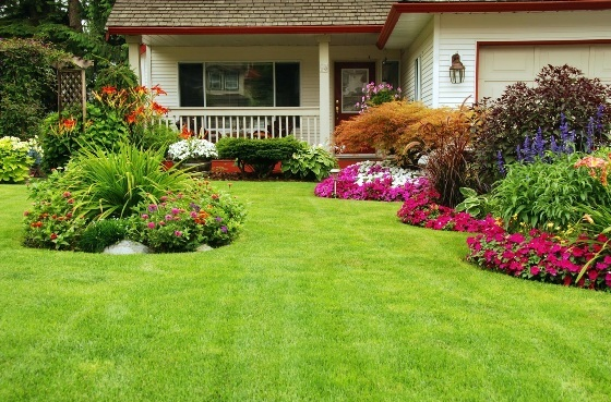 No More Hassles And The Best Results With A Professional Irrigation System
