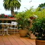 Inspiring ideas for decorating terraces