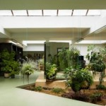 Ideas for an indoor garden at home