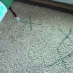 Removing the odor of a carpet
