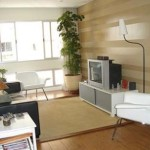 Little Apartment Redesign Tips